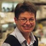 Dr. Brenda Gallie