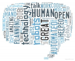 Tagxedo-wordcloud-techna2014-allPolls-300x245